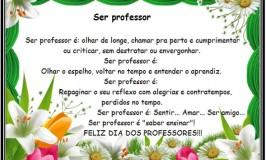 Ser Professor é…