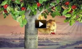 Vídeo com mensagem desejando Bom Final de Semana aos amigos