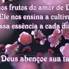 Somos frutos do amor de Deus